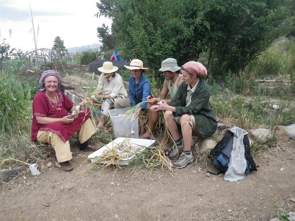 lama foundation people working in the garden